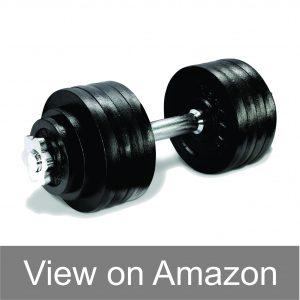 lion roar fitness dumbbells review