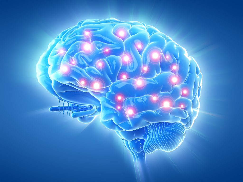 healthy brain with cognitive activity
