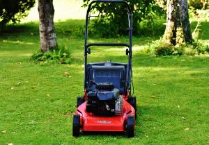 self-propelled mower in lawn