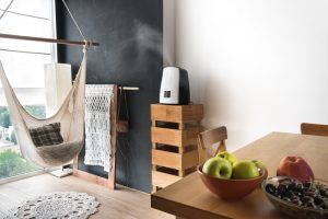 the best humidifier reviews