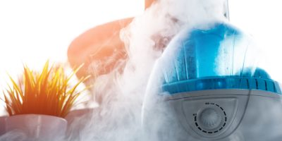 best warm mist humidifier reviews and buying guide