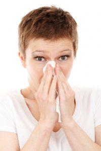 allergy vacuum HEPA