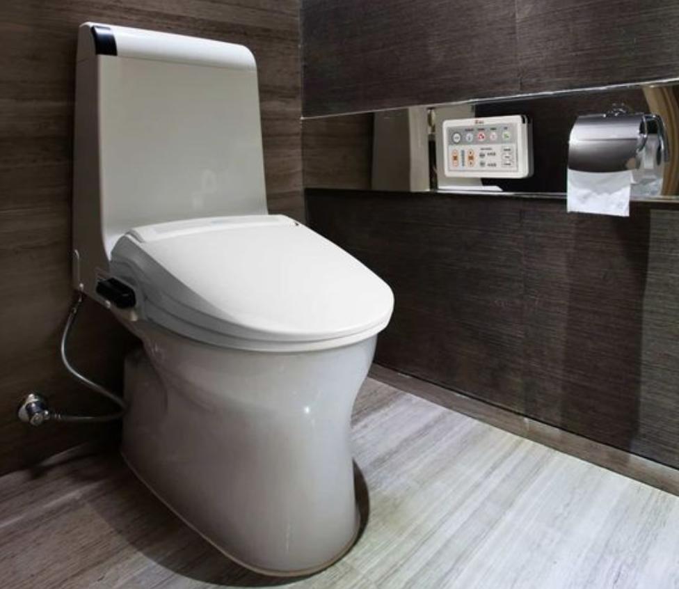 7 Best Bidet Toilet Combos Of 2020 Reviews Buying Guide