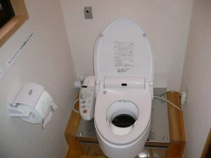 toilet and bidet all in one