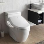 Best Bidet Toilet Combos 2021: Top Reviews & Buying Guide