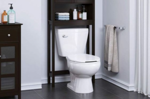 best quiet flush toilets reviews
