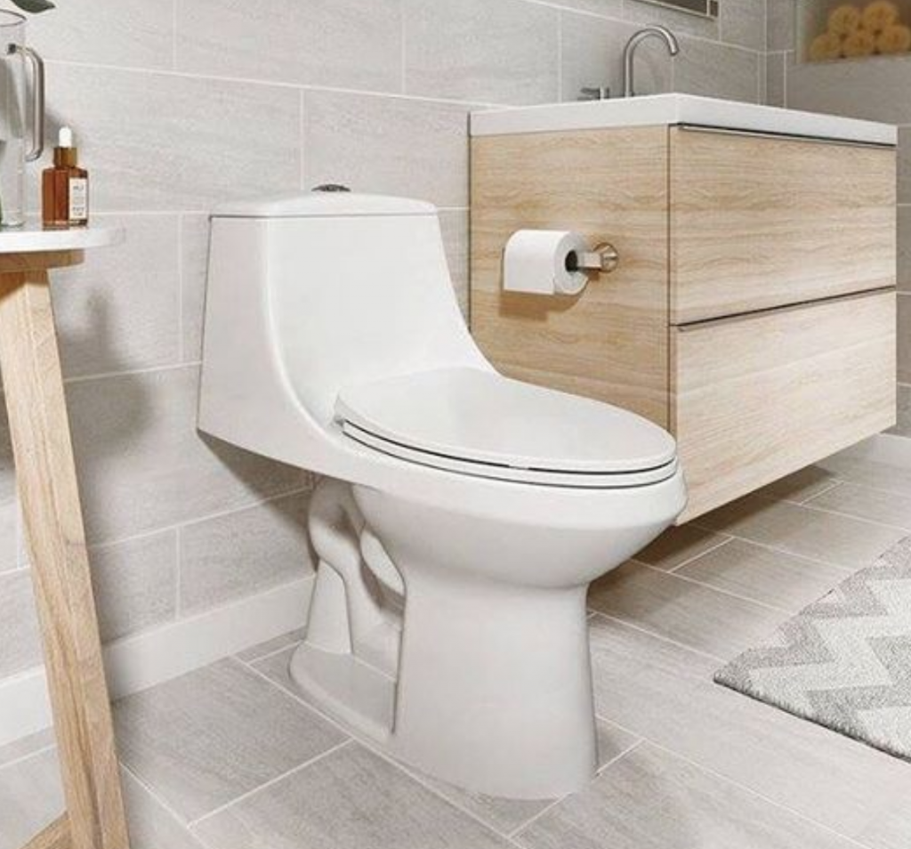best quiet flush toilet reviews