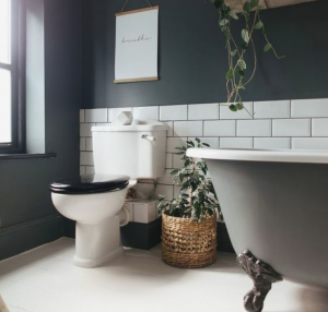 slim toilet for small spaces